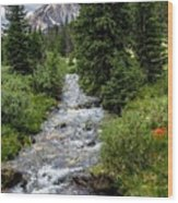 Pure Rocky Mtn. Spring Water Wood Print