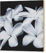 Pure White Large Canvas Art, Canvas Print, Large Art, Large Wall Decor, Home Decor, Photography Wood Print