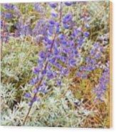 Pure Wild  Purple Wood Print
