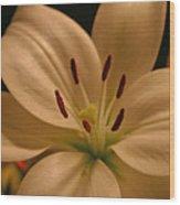 Purity In Full Bloom Wood Print