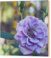 Purple Rose Glow Wood Print