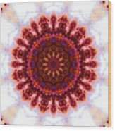Purple And Gold Flower Wood Print