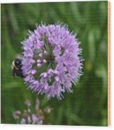 Purple And The Bee Wood Print