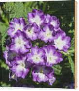 Purple And White Bouquet Wood Print