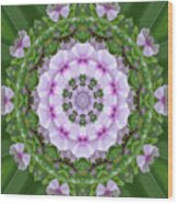 Purple And White Flowers  Wood Print
