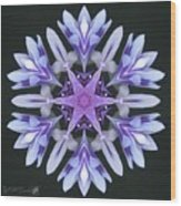 Purple And White Frosted Queen Mandala Wood Print