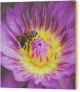 Purple And Yellow Lotus With A Bee Textured Wood Print