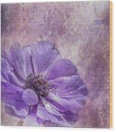 Purple Anemone Art Wood Print