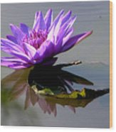 Purple Beauty On The Pond Wood Print
