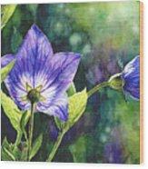 Purple Bell Flower Wood Print