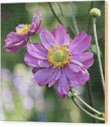 Purple Blossoms 2 Wood Print