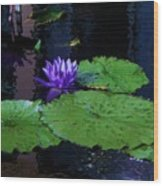 Purple Blue  Lily Wood Print