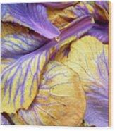 Purple Cabbage Wood Print