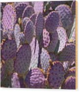 Purple Cacti Wood Print