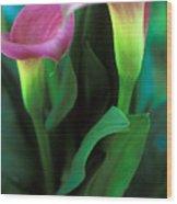 Purple Calla Duet Wood Print