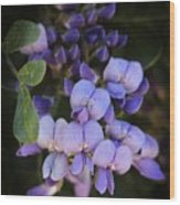 Purple Cascading Floral Art Wood Print