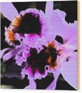 Purple Cattleya Orchid Wood Print