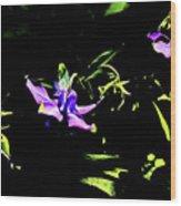 Purple Clematis 4 Wood Print
