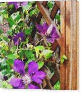 Purple Clematis On Trellis Wood Print