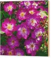 Purple Cluster 2 Wood Print