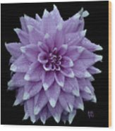 Purple Dahlia Cutout Wood Print