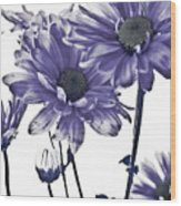 Purple Daisies Wood Print