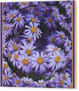 Purple Daisy Abstract Wood Print