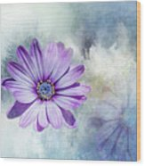 Purple Daisy Swirl Wood Print