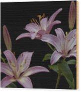 Purple Day Lilies Wood Print
