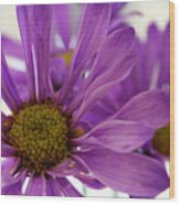 Purple Delight Wood Print
