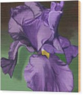 Purple Fantasy Wood Print