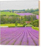 Purple Fields Of Love Wood Print
