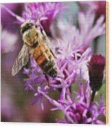 Purple Flower Bee Wood Print