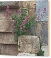 Purple Flowers In Ruins Wood Print