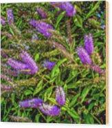 Purple Flowers Of Chiloe Wood Print