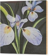 Purple Flowers With Green Leaves Wood Print