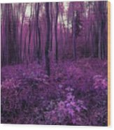 Purple Forest Wood Print