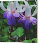 Purple Fuschia Wood Print
