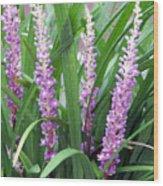 Purple Grass Wood Print