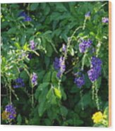 Purple Hanging Flowers Wood Print