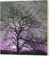 Purple Haze Across The Sky Wood Print