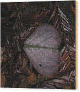 Purple Heart Shaped Leaf Wood Print