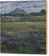Purple Heather And Mount Errigal From Dore Co. Donegal Ireland   Wood Print