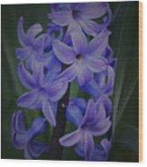 Purple Hyacinths - 2015 D Wood Print