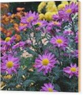 Purple In Garden Wood Print