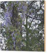 Purple In The Trees Wood Print