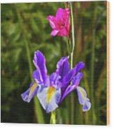 Purple Iris And Gladioli Byzantinus Wood Print