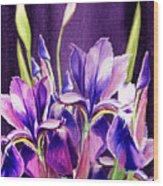 Purple Iris Dance  Wood Print