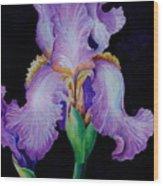 Purple Iris II Wood Print