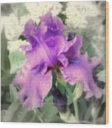 Purple Iris In Focal Black And White Wood Print